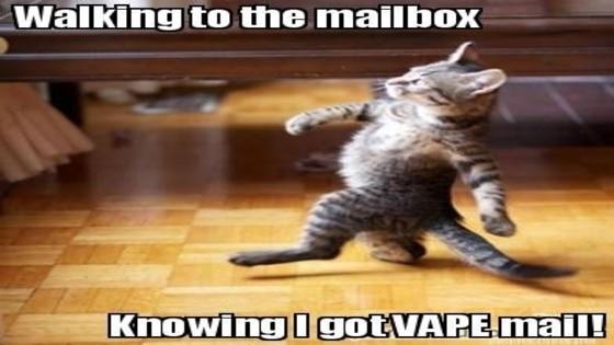The Best Vape Memes | 25+ Hilarious Vaping Memes